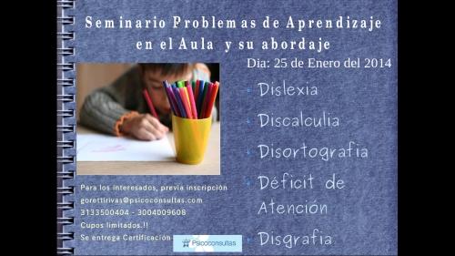 Seminario de Problemas de Aprendizaje en Aula.