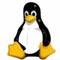 Grupo de Unix y Linux