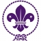 Grupo de Scout