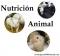Grupo de Nutrición y alimentación animal