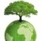 Foro de Medio ambiente